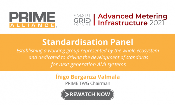 Advanced Metering Infrastructure 2021 – Standardisation Panel